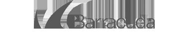 barracuda-gray